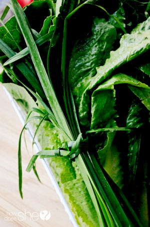 carlee southwestern summer salad (5)