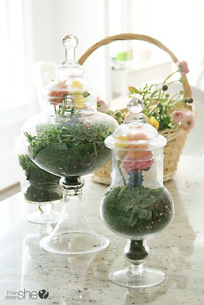 How To Create Magnificent Floral Terrariums!