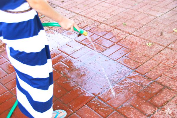 Ashley ordenando el patio trasero (7)