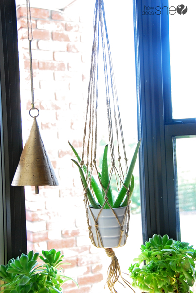 ashley DIY Macrame and Health House Plants (18)