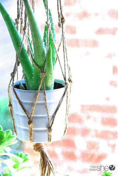 ashley DIY Macrame and Health House Plants (19)