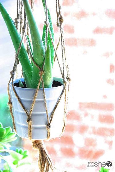 ashley DIY Macrame and Health House Plants (19)