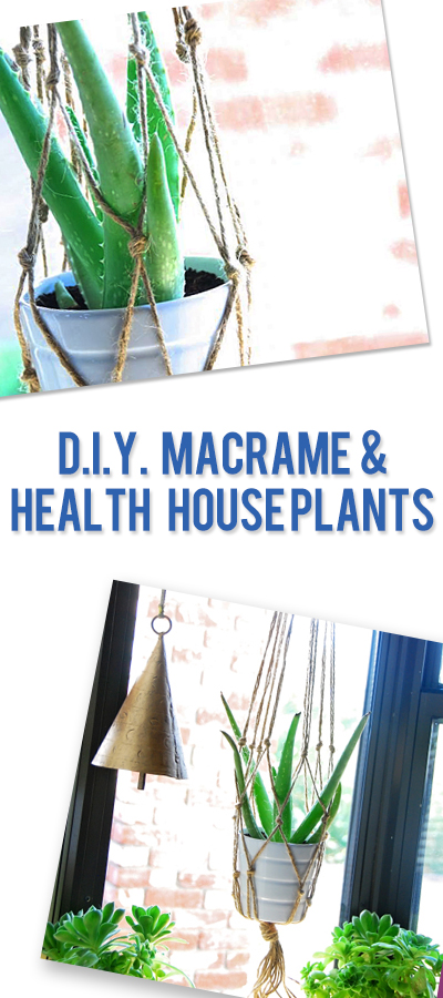 DIY Macrame and Healthy House Plants