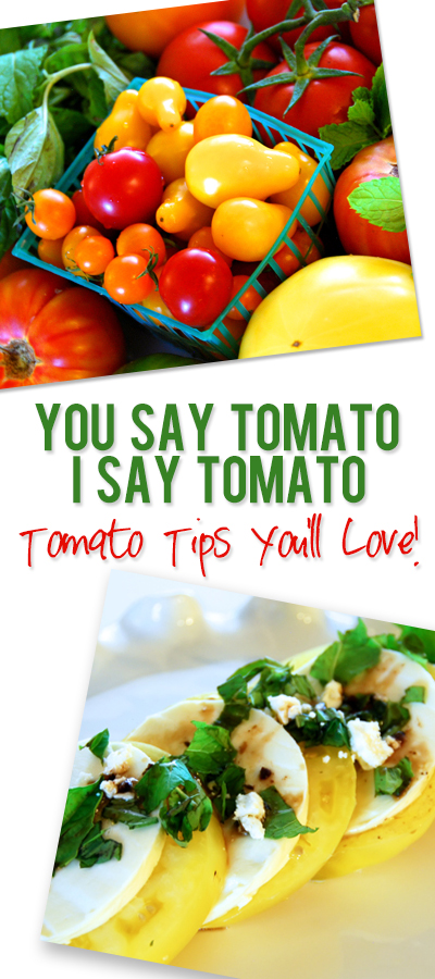 ashley tomato pinterest