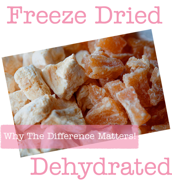 Freeze Dried or Dehydrated Foods?
