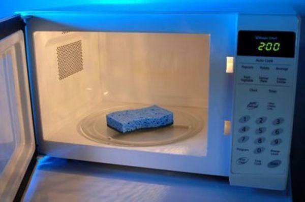 sponge-clean-microwave