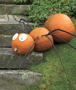 Craft-Project-Spindly-Spider