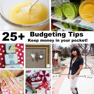 budget collage_edited-1