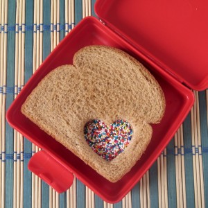 fairy-sandwich-box-1024x1024