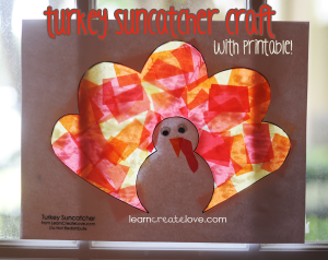 turkeysuncatcher-045