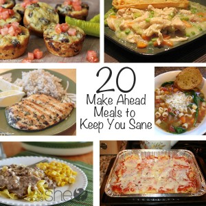 20 Make Ahead Meals to Keep you Sane