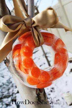 Ice-wreath-carrot
