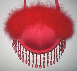 bra purse