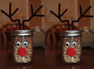 diy_mason_jar_christmas_craft_idea_reindeer_food