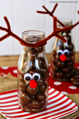 reindeer-milk-bottle-1-web