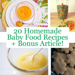 20 Homemade Baby food Recipes and bonus article