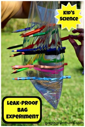 Leak-Proof-Bag-Experiment-688x1024