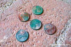 green-pennies1