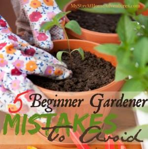 Garden tips for planting a garden that will grow