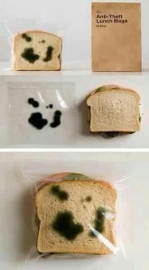 moldy sandwich