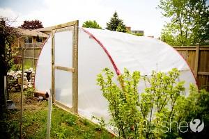 trampoline-greenhouse-15