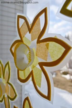 Daffodil16