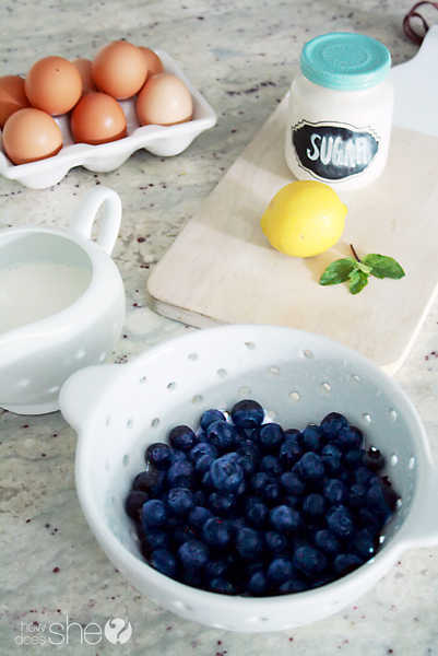 blueberry gelato recipe (1)
