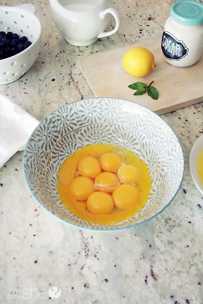 blueberry gelato recipe (3)