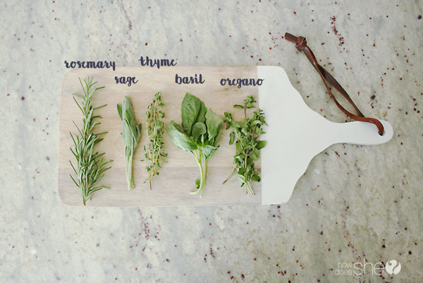 Preserving fresh herbs (1)