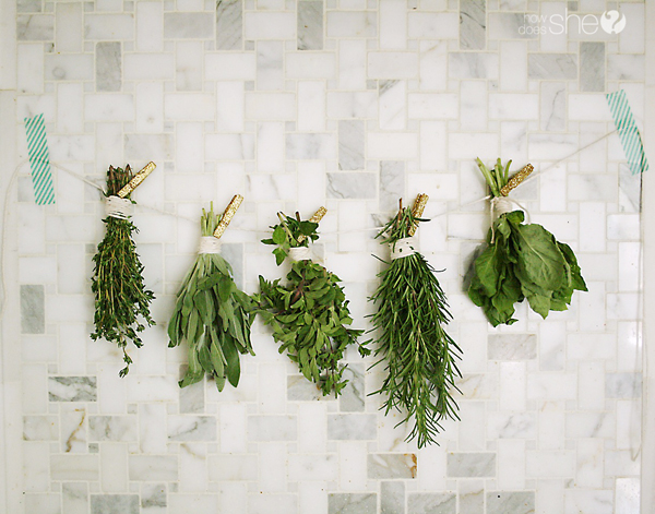 Preserving fresh herbs (2)