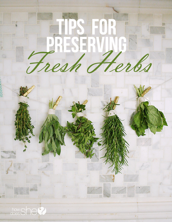 Preserving Fresh Herbs