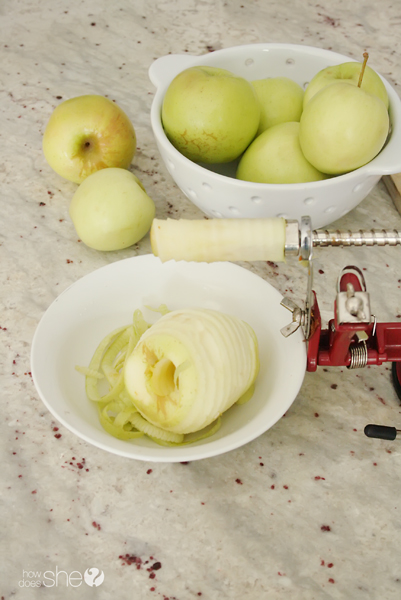 Slice Up Your Apple a Day (4)