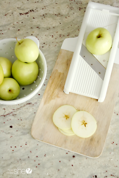 Slice Up Your Apple a Day (6)