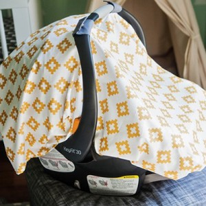 diy-carseat-canopy-featured-image