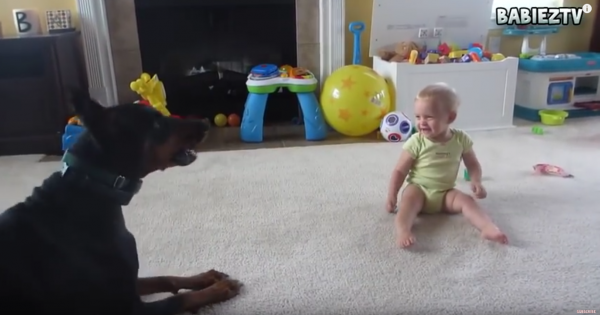 every baby should have a dog
