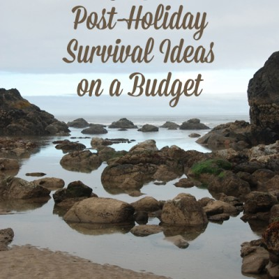 10 Post-Holiday Survival Ideas on a Budget