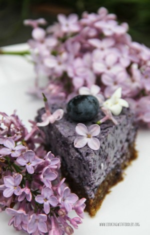 Blueberry-and-Chia-Seed-Cake-5-655x1024