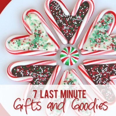 7 Last Minute Gifts and Goodies