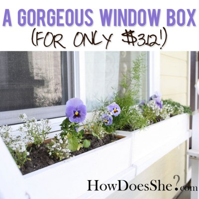 $3.12 Window Box