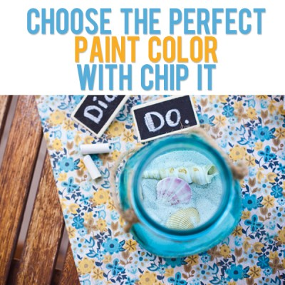 Choose the Perfect Paint Color with Chip it!