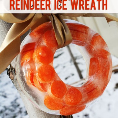 Fun Frugal Family Tradition #6 Reindeer Ice Wreath