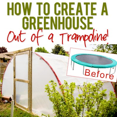 How to Create a Greenhouse out of a Trampoline!
