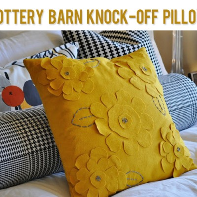 Pottery Barn Knock-Off Pillow
