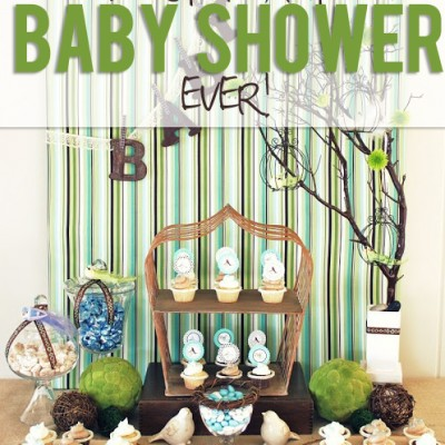 The Most Beautiful Baby Shower Ever!