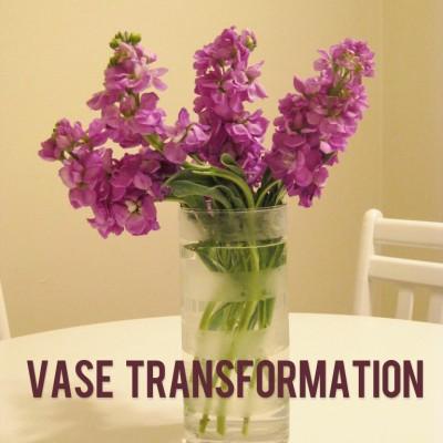 Vase Transformation