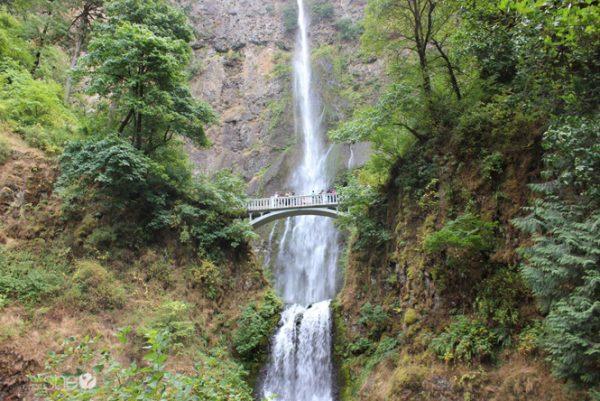 12 reasons the Oregon coast is even more fun than Disneyland (9)