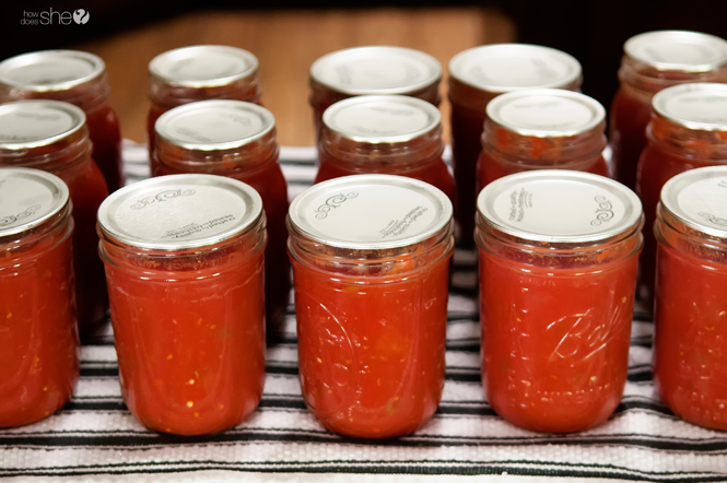 Easy canned salsa (5)
