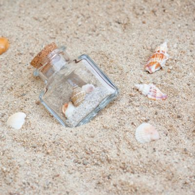 Shake your Seashells! Fun summer craft idea