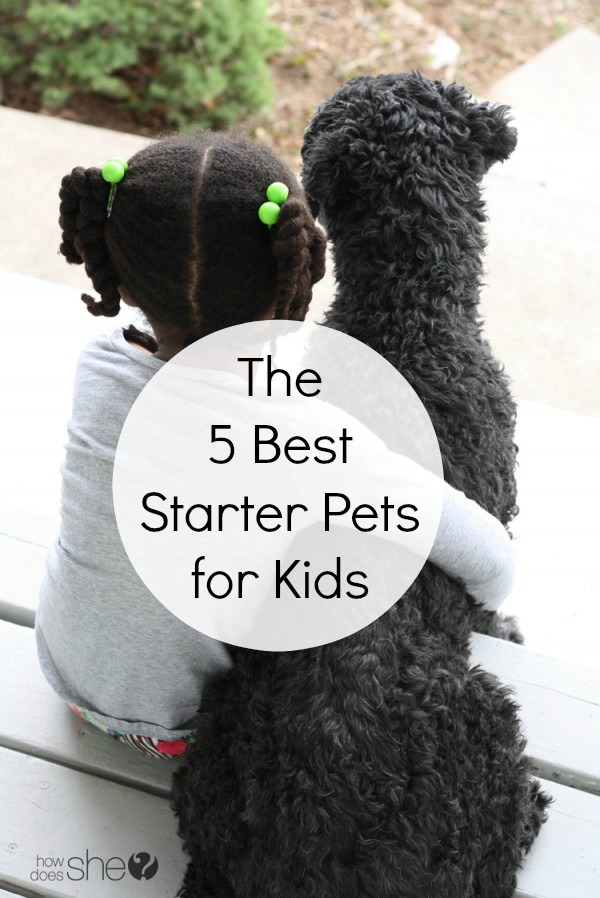 The Best Starter Pets For Kids When You're Not Sure They