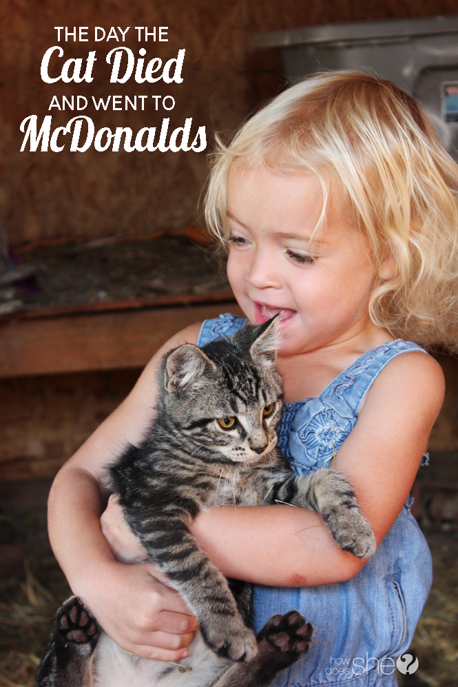 The Day the Cat Died and Went to McDonalds